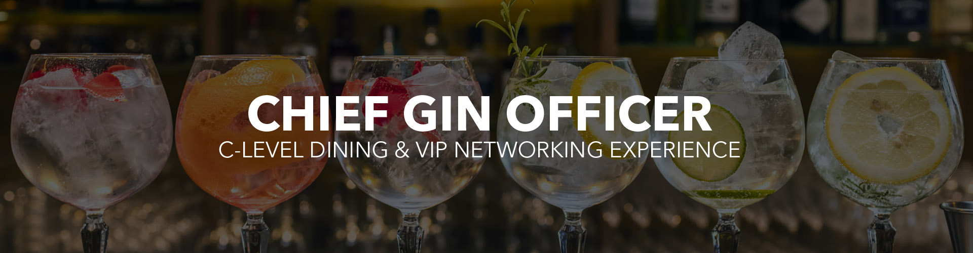 Chief Gin Officer C-level Dinner and Networking-1.jpg